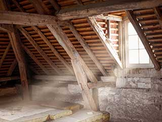 Attic Cleaning Services | Attic Cleaning Fremont, CA