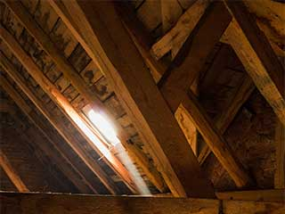 Attic Insulation Removal Services | Attic Cleaning Fremont, CA