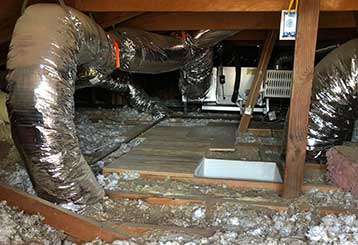 Crawl Space Cleaning | Attic Cleaning Fremont, CA