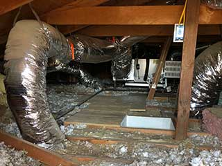 Crawl Space Cleaning Services | Attic Cleaning Fremont, CA